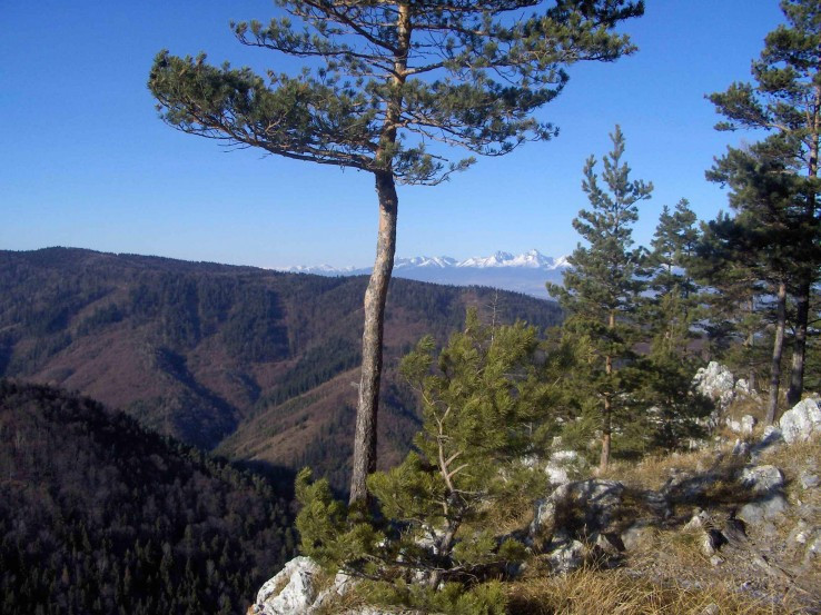 výhľad aj na Tatry