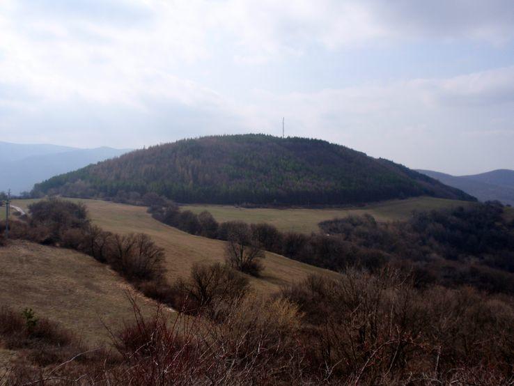 Drieňová