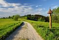 Zelený hrebeň Javorníkov