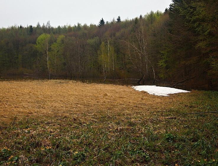 Jarné rašelinisko Postávka