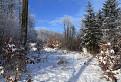 Bardejovskými lesmi / 1.0435