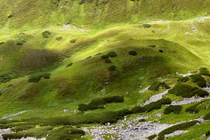 Pehy vo Vajskovskej doline