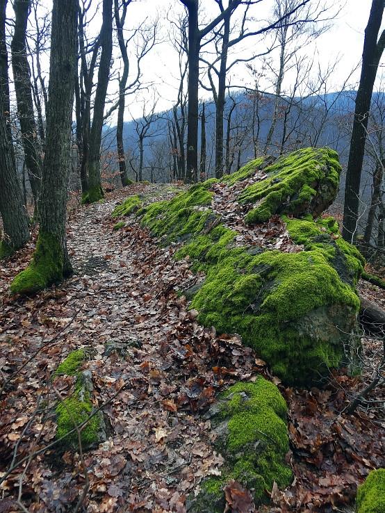 zelene skaly