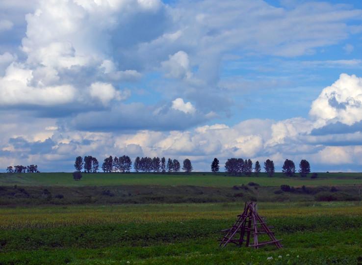 Stromy na horizonte