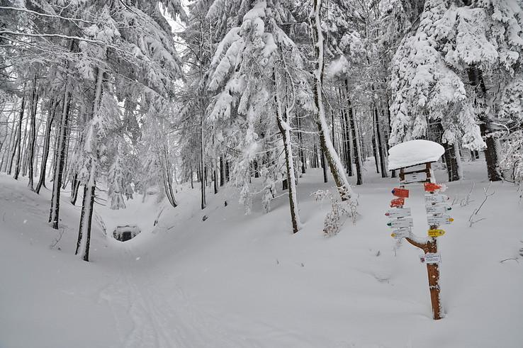 Zimička pri tuneli