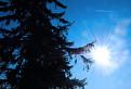 Slnko nad Bezovcom
