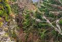 Pohľad z Havraních skál