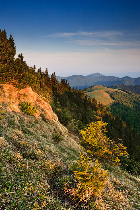 Ráno v horách II.