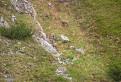 Kamzíky pod Svišťovkou