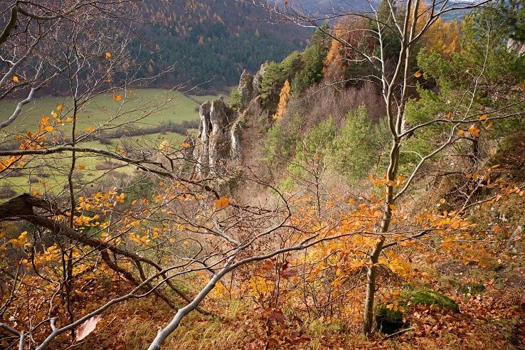 Ve spárech podzimu