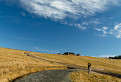 Cesta, kameň a mraky / 1.0333