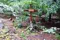 Horvátov kríž