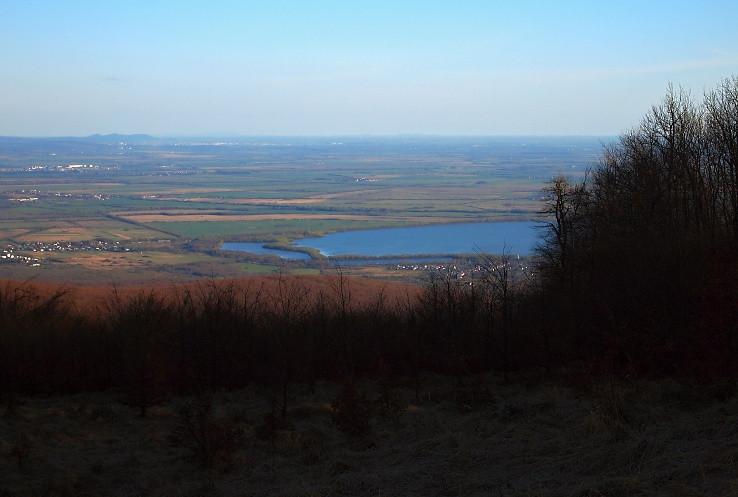 Východoslovenská nížina