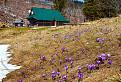 Jar na Burde II