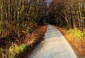 Cesta na planinu