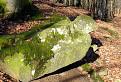 Stopy v kameni