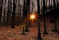 Ranný pozdrav od slnka