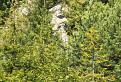 kamenná hlava - strážca jaskyne / 1.0000