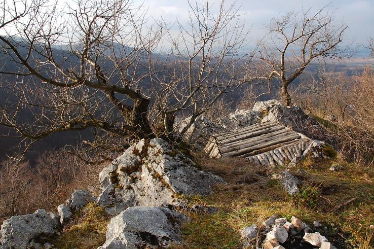 súdrevie na skalách