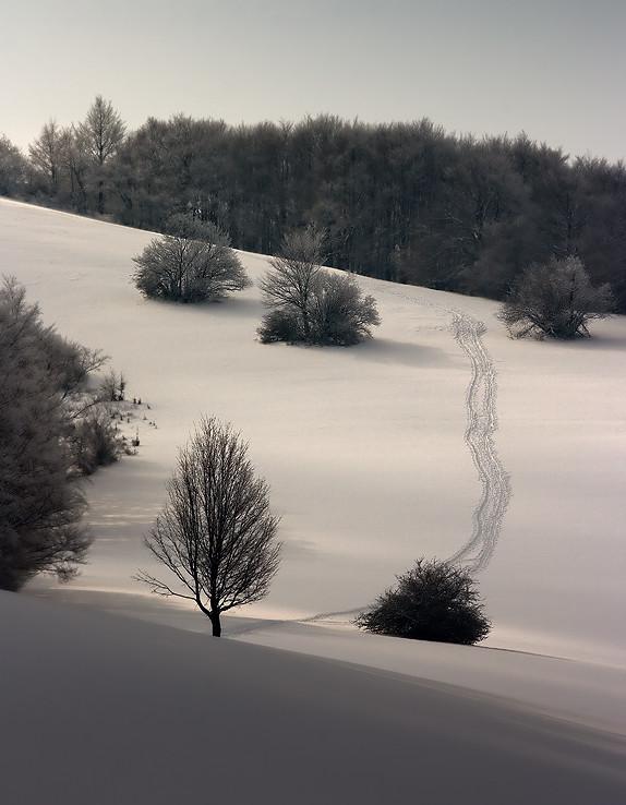 Cestička v bielom