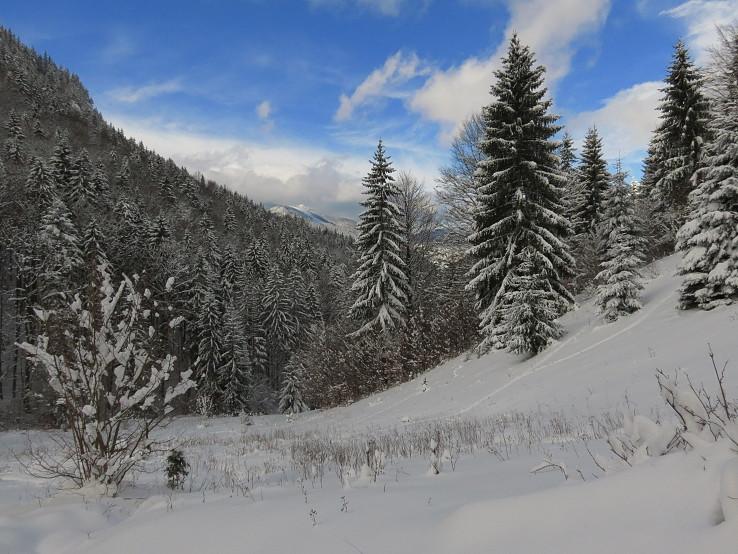 Snehom pokrytý...