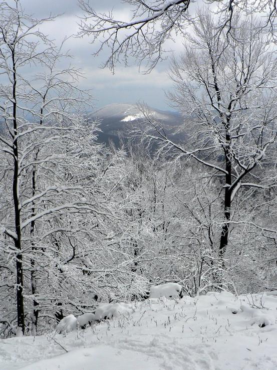 Do Malých Karpát sa vrátila zima 1