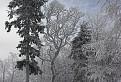 Na Nový rok 2007, cestou na Lajošku / 1.5152
