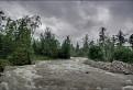 Studený potok, Stará Lesná