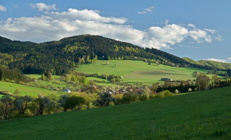 Dubica