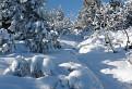 Zimná krajinka.