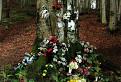 Posvätný strom