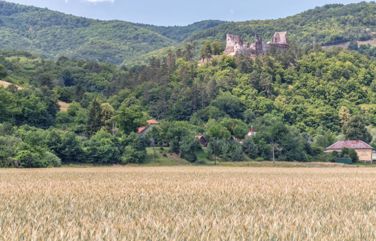 Zrúcanina hradu Revište