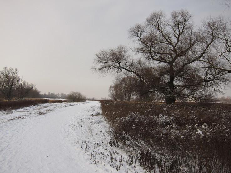 prímoravská zima