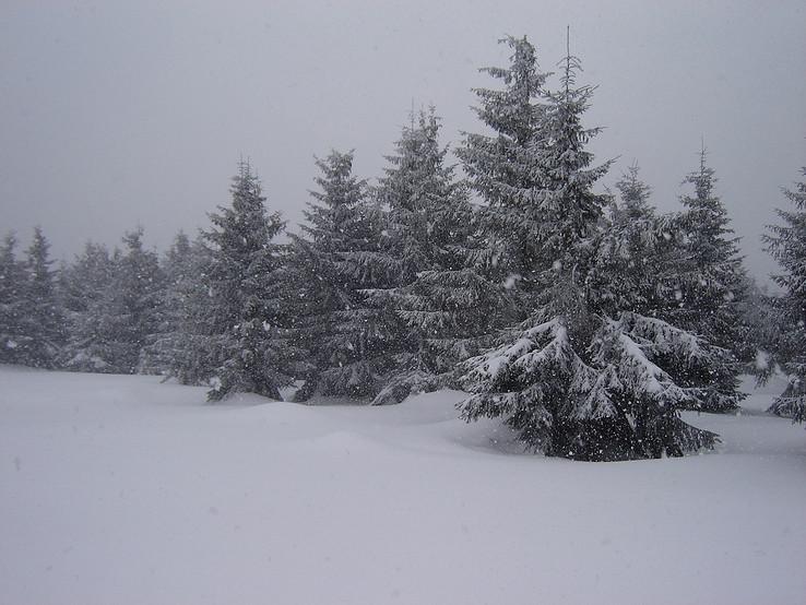 Zima na Flochovej