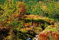 Trochen jesenných farieb