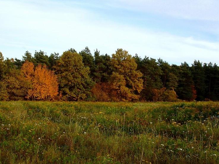 Začala jeseň