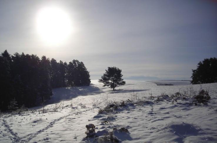 zimna krajinka