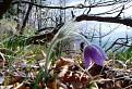 Jar na Muranskej planine