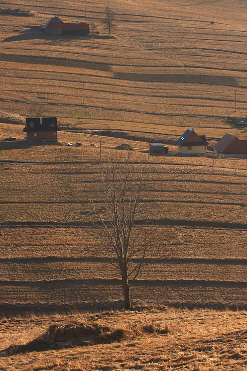 Antošovský vrch v zime