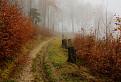 V Súľovskej hmle 2
