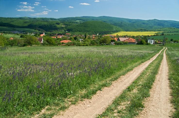 Cestou do dediny