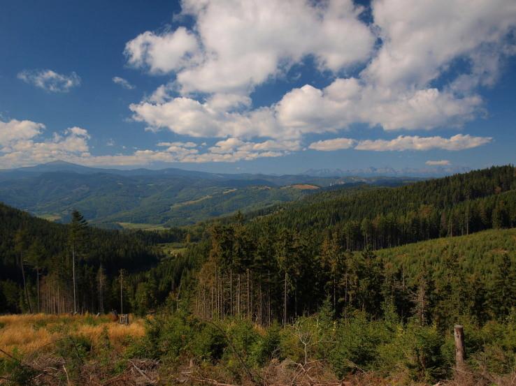 Na hrebeni Volovských vrchov pod Predným Rakovcom