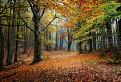 ....a je tu jeseň