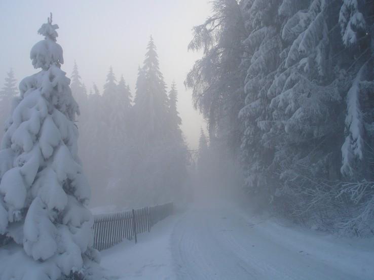 Cesta do srdca zimy