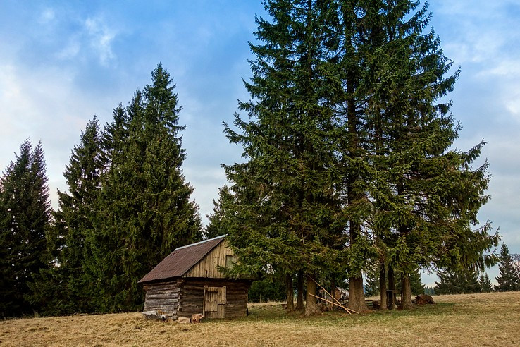 Strelnícky salaš na Bukovine