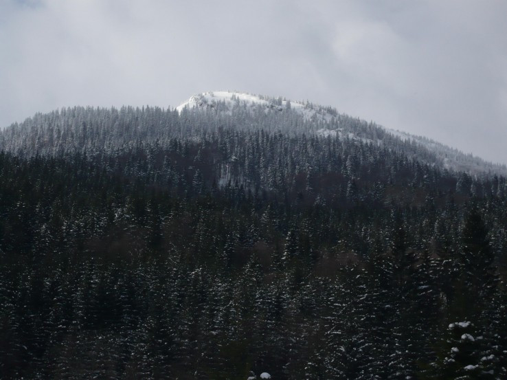 Suchý vrch zo Zelenej doliny