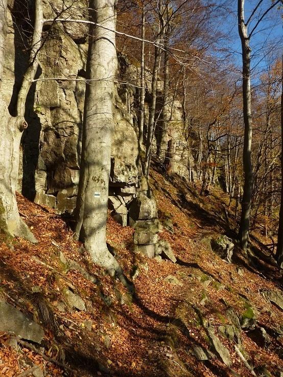 pod Jaseňovou skalou