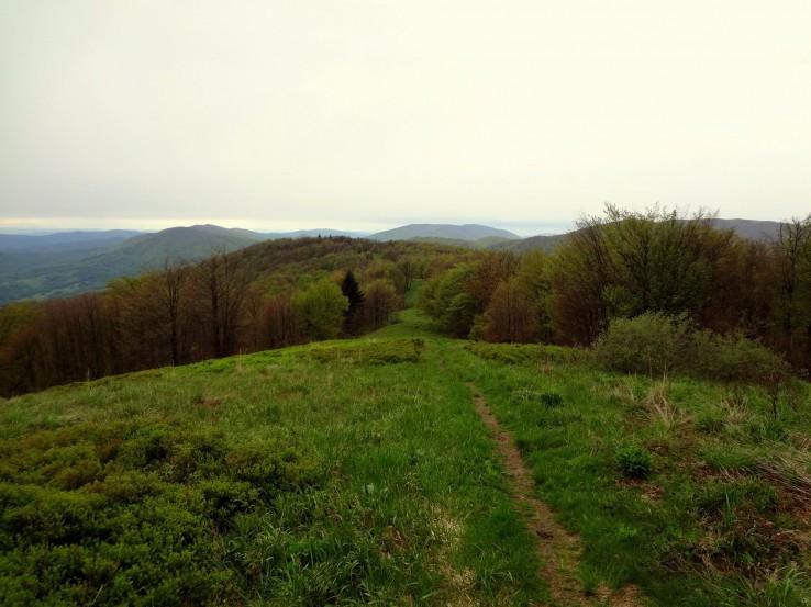 Bukovinská cestička