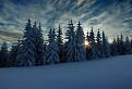 Zimná idylka...