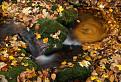 Malokarpatský jesenný